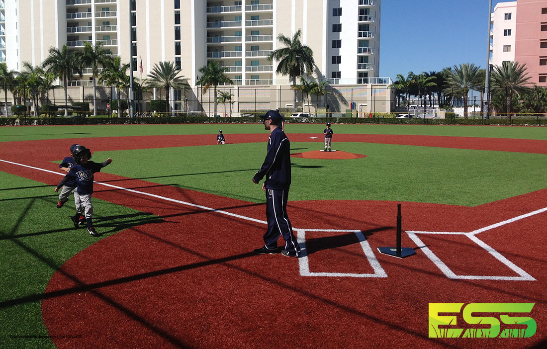 Baseball_Field_Turf_2.jpg