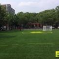 Athletic_Field_Turf_9.jpg