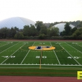Football_Field_Turf_5.jpg