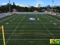 Athletic_Field_Turf_6.jpg