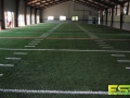 Indoor_Athletic_Field_Turf.jpg