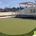 Golf_Course_Turf_13.jpg