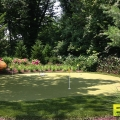 residential-golf-turf-2.jpg