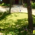 residential-golf-turf-3.jpg