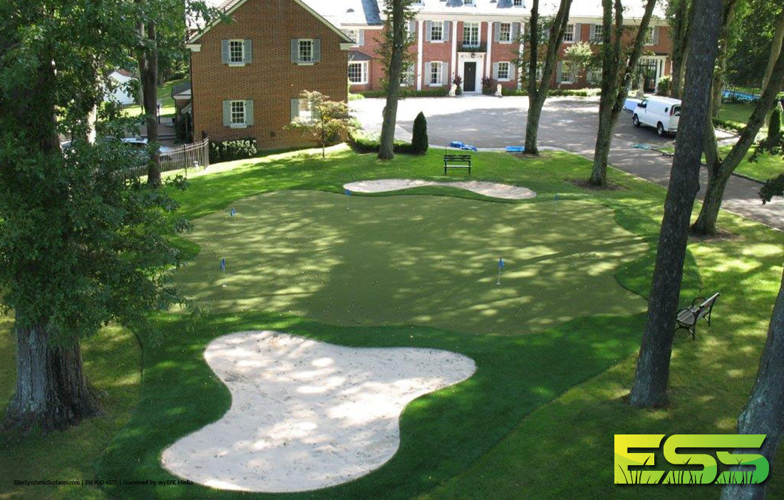 elite-synthetic-surfaces-ess-deveccihio-putting-green-turf-1.jpg