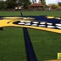 lacrosse-field-turf-2.jpg