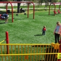 Playset_Synthetic_Turf_12.jpg