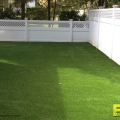 Backyard_Synthetic_Turf_9.jpg