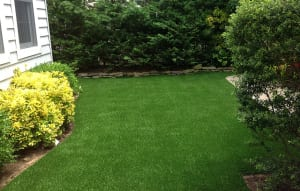 Lawns and landscaping